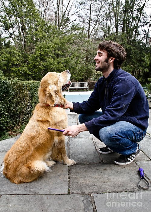 Golden Retriever Greeting Card featuring the photograph Dog Grooming by Photo Researchers, Inc.
