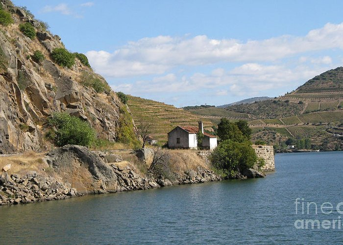 Nature Greeting Card featuring the photograph Douro River Valley by Arlene Carmel