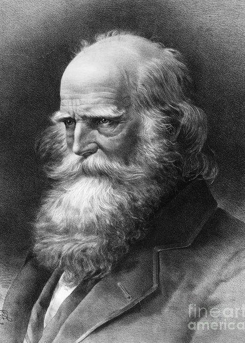 1884 Greeting Card featuring the photograph William Cullen Bryant by Granger