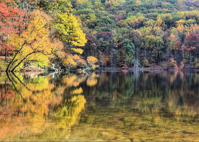 Cunningham Falls Greeting Card featuring the photograph A Bright Spot by JC Findley
