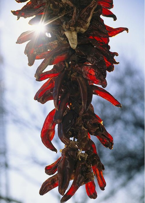 North America Greeting Card featuring the photograph A Bunch Of Red Peppers Hung To Dry by Stephen St. John