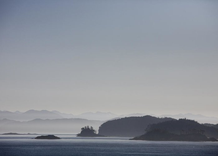Sunset Greeting Card featuring the photograph A Misty Afternoon On Haida Gwaii by Taylor S. Kennedy