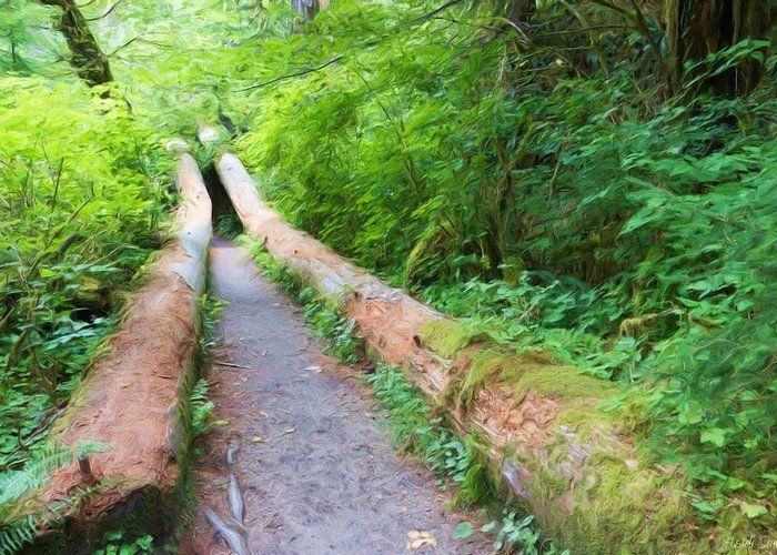 Hall Of Mosses Greeting Card featuring the photograph A Well Marked Path by Heidi Smith