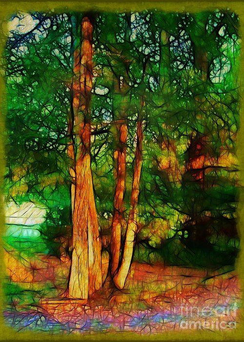 Trees Greeting Card featuring the photograph Afternoon Delight by Judi Bagwell