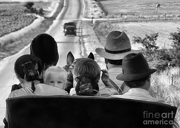 Amish Family Greeting Card featuring the photograph Amish Family Outing II by Julie Dant