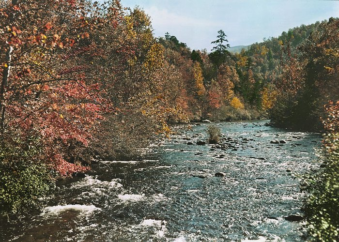 tennessee Greeting Card featuring the photograph An Autumn Scene Along Little River by J. Baylor Roberts