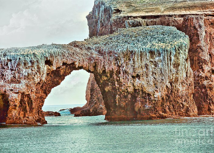 Anacapa Greeting Card featuring the photograph Anacapa Island 's Arch Rock by Cheryl Young