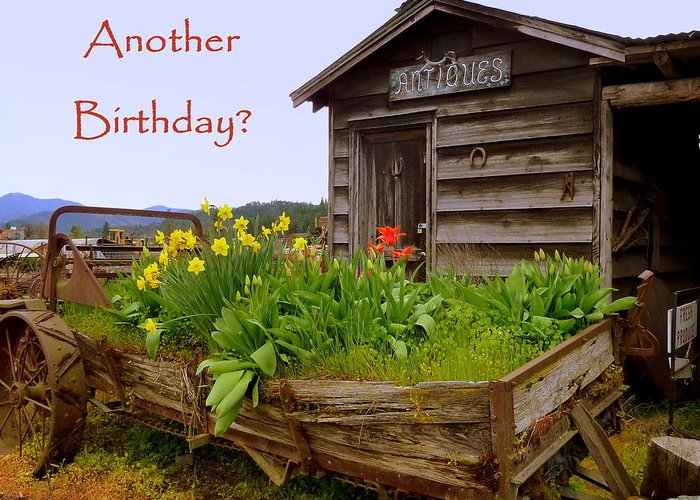 Cindy Greeting Card featuring the photograph Another Birthday Antiques by Cindy Wright