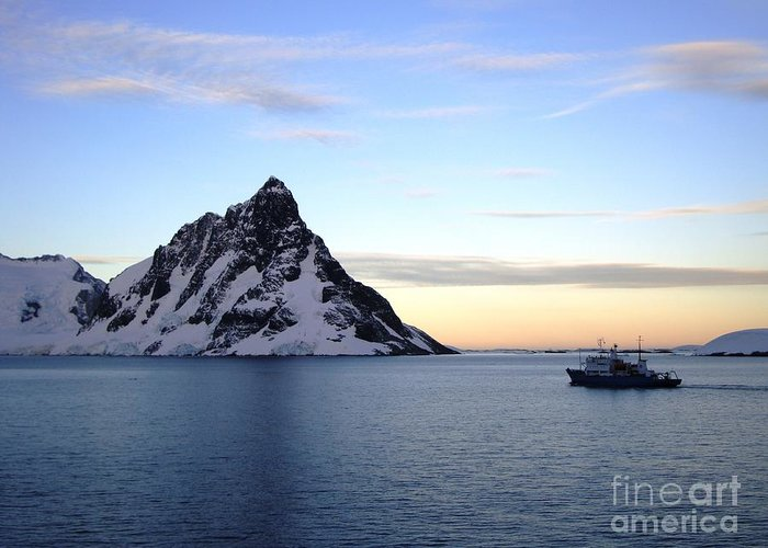 Antarctica Greeting Card featuring the pyrography Antarctica by Karen Kean