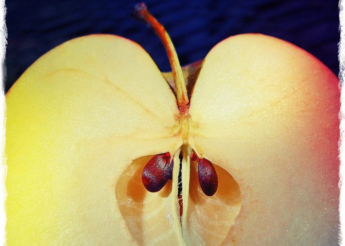 Apple Greeting Card featuring the photograph Apple by Skip Hunt