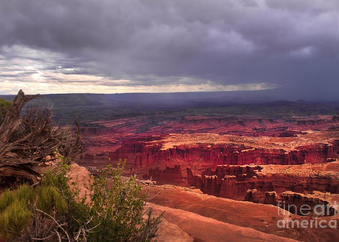 Panoramic Greeting Card featuring the photograph Approaching Storm by Robert Bales