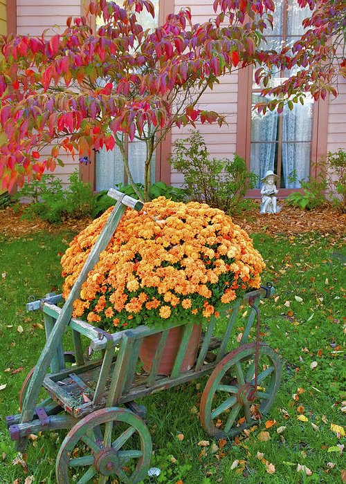 Fall Greeting Card featuring the photograph Autumn Display I by Steven Ainsworth