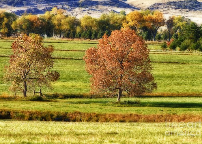Autumn Greeting Card featuring the photograph Autumn Landscape Dream by James BO Insogna