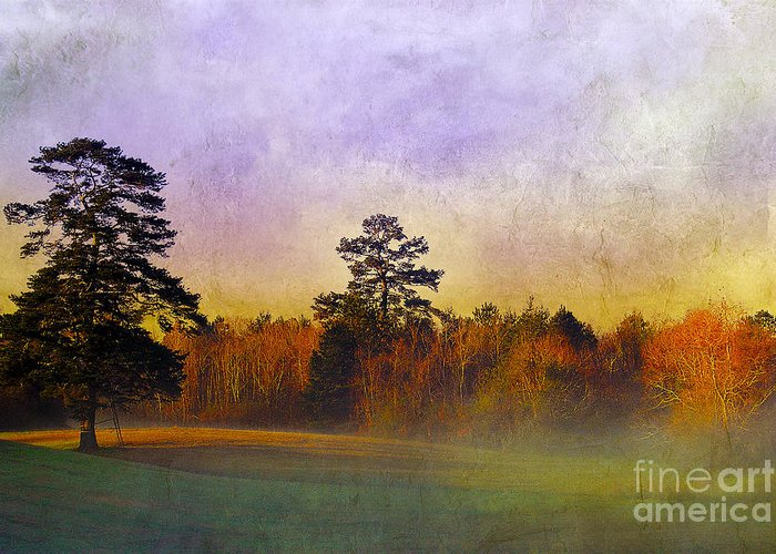 Mist Greeting Card featuring the photograph Autumn Morning Mist by Judi Bagwell
