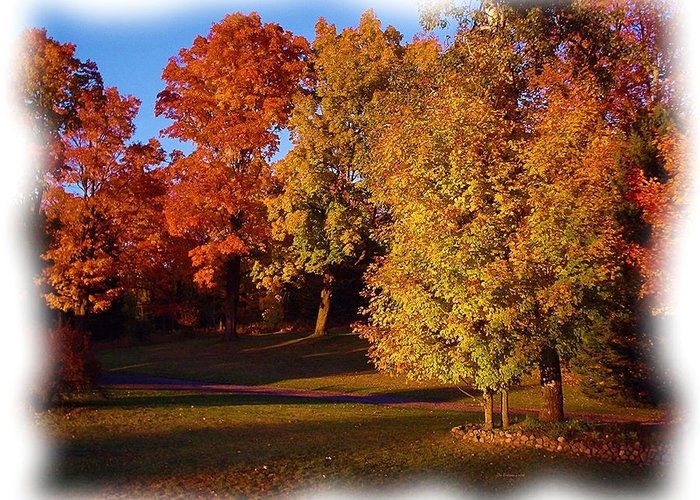 Autumn Scene Greeting Card featuring the photograph Autumn On Swanson's Path by Liz Evensen