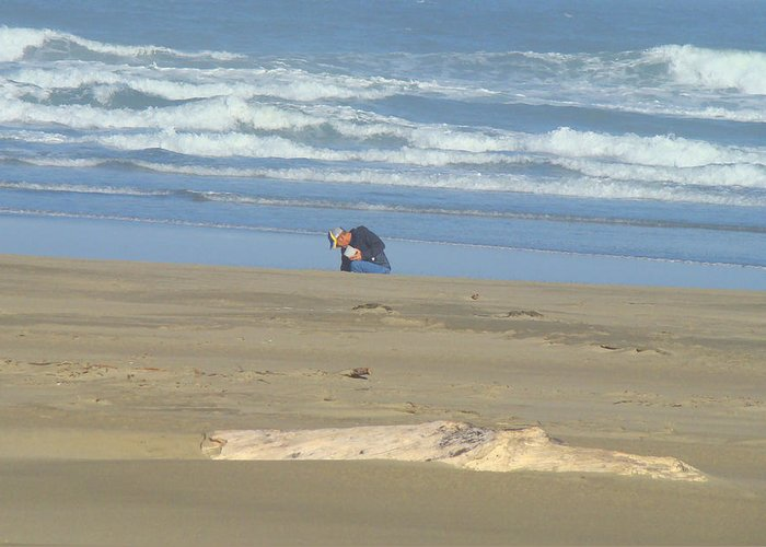 Bandon Greeting Card featuring the photograph Bandon Oregon Beach Comber Prints Ocean Coastal by Baslee Troutman
