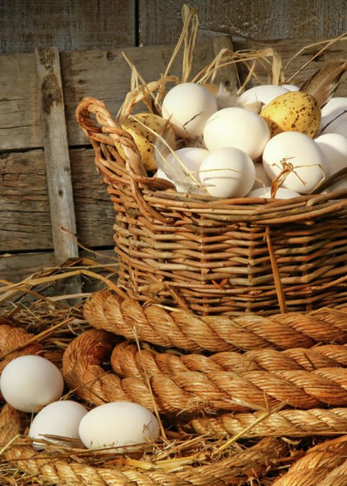 Agriculture Greeting Card featuring the photograph Basket Of Eggs On Straw by Sandra Cunningham