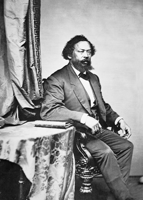 Male; Portrait; Seated; Formal; African American; African-american; Black; Negro; Freedman; Ex-slave; Ex Slave; Freed Slave; Republican Congressman; Politician; Politics; #1; Emancipation; Equal Rights; Equality; Emancipated Greeting Card featuring the photograph Benjamin S Turner by Mathew Brady