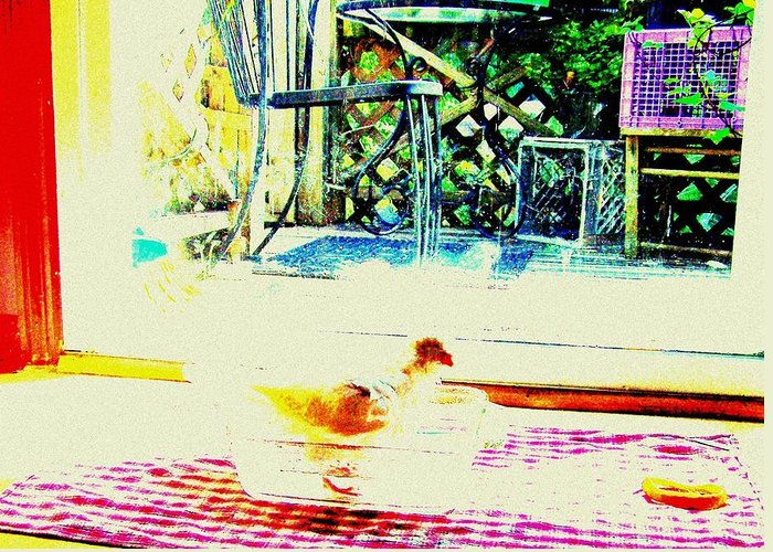 Pigeon Greeting Card featuring the mixed media Bird Bath by YoMamaBird Rhonda