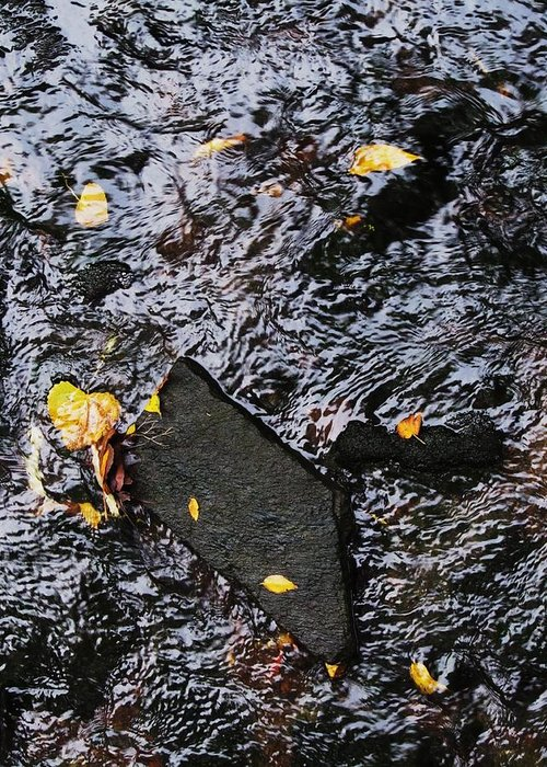 Black Rock Yellow Leaves Water Greeting Card featuring the photograph Black Rock At Graue Mill by Todd Sherlock