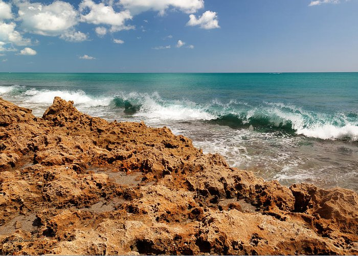 Blowing Rocks Greeting Card featuring the photograph Blowing Rocks Jupiter Island Florida by Michelle Wiarda