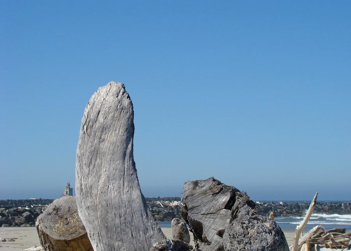 Driftwood Greeting Card featuring the photograph Blue Sky Coastal Landscape Driftwood Rock Pier by Baslee Troutman