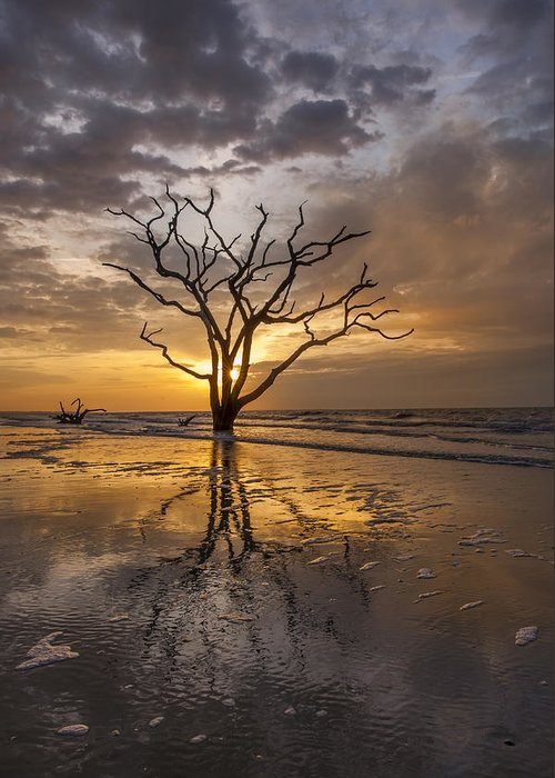 Botany Bay Greeting Card featuring the photograph Boneyard Sunrise by Joseph Rossbach