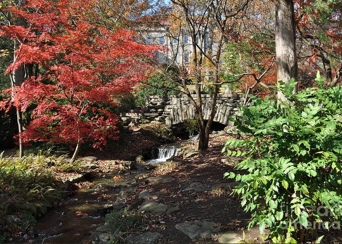 Cheekwood Gardens Greeting Card featuring the photograph Bridge Over Water by Denise Ellis