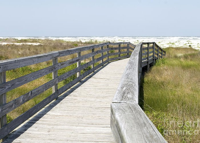 Talbot Island Greeting Card featuring the photograph Bridge To The Beach by Glennis Siverson