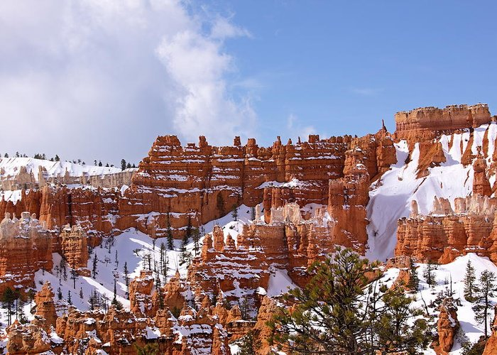 Bryce Canyon Greeting Card featuring the photograph Bryce Canyon Castles by Viktor Savchenko