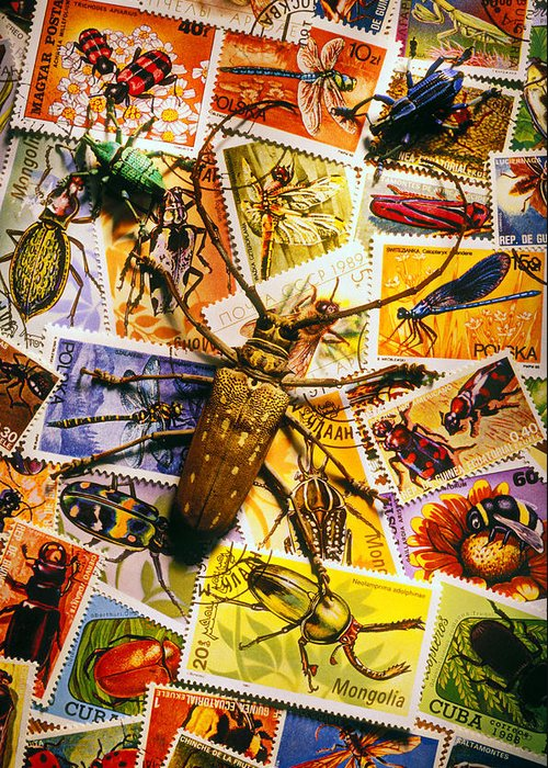 Stamp Greeting Card featuring the photograph Bugs On Postage Stamps by Garry Gay