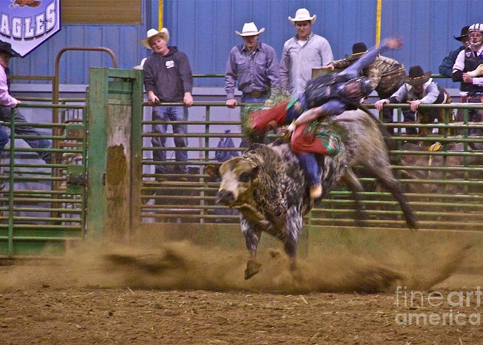 Photography Greeting Card featuring the photograph Bull Rider 1 by Sean Griffin