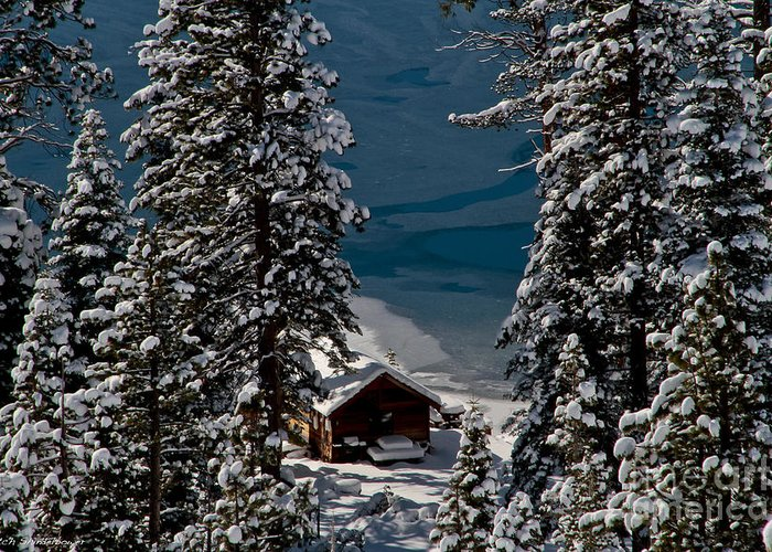 Cascade Lake Greeting Card featuring the photograph Cabin In The Woods by Mitch Shindelbower
