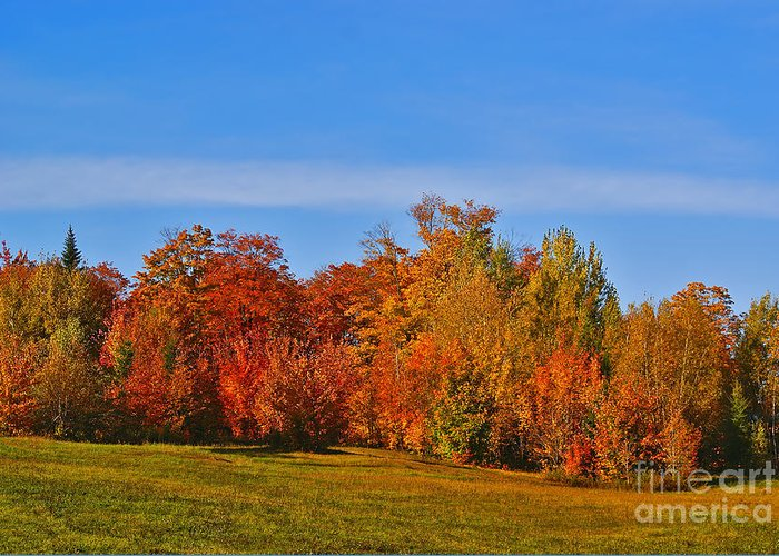 Autumn Greeting Card featuring the photograph Canada In Colors by Aimelle