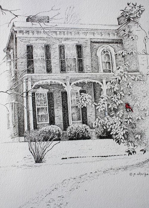 Historic Home Greeting Card featuring the drawing Cardinal by Patsy Sharpe