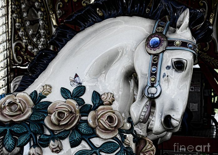 Dark Horse Greeting Card featuring the photograph Carousel Horse - 8 by Paul Ward