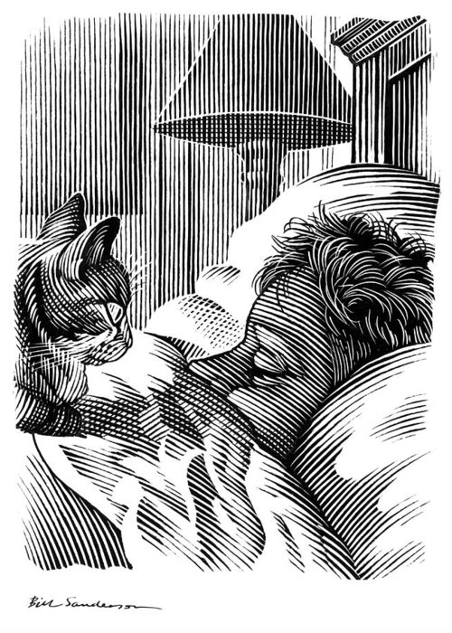 Domestic Cat Greeting Card featuring the photograph Cat Watching Sleeping Man, Artwork by Bill Sanderson