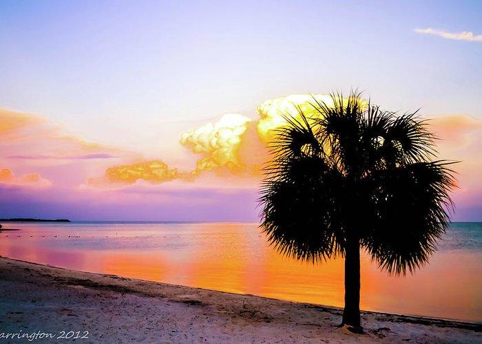 Ocean Greeting Card featuring the photograph Cedar Key Sunset by Shannon Harrington