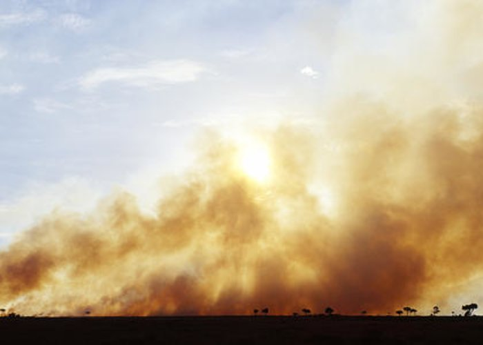 Africa Greeting Card featuring the photograph Controlled Burn Masai Mara Game Reserve by Jeremy Woodhouse