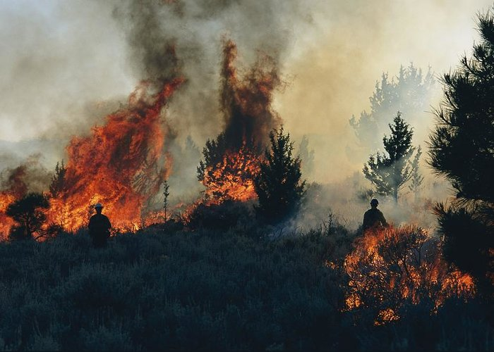 North America Greeting Card featuring the photograph Controlled Fires Burn Eagerly In Small by Melissa Farlow