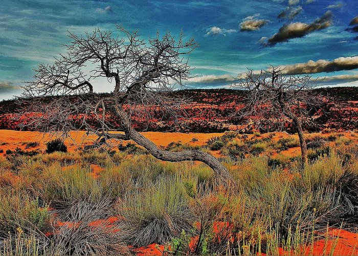 Utah Greeting Card featuring the photograph Coral Dunes by Benjamin Yeager