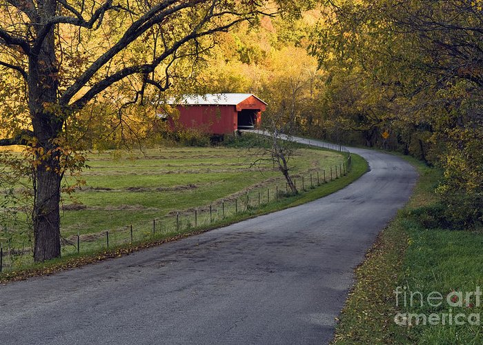Road Greeting Card featuring the photograph Country Lane - D007732 by Daniel Dempster