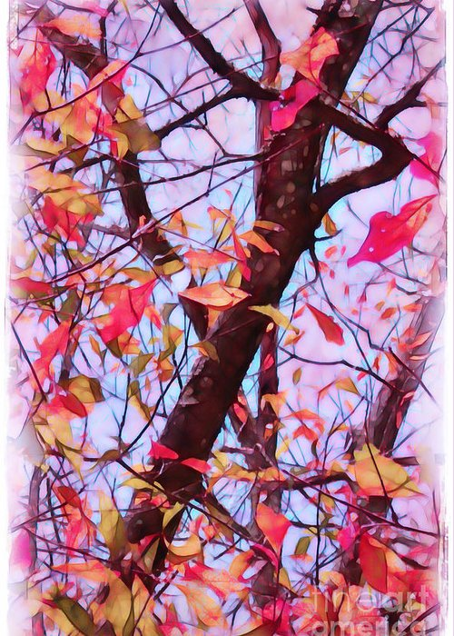 Fall Greeting Card featuring the photograph Crisp Autumn Day by Judi Bagwell