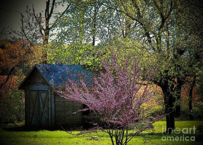 Ohio Greeting Card featuring the photograph Daddys Old Shed In The Spring by Joyce Kimble Smith