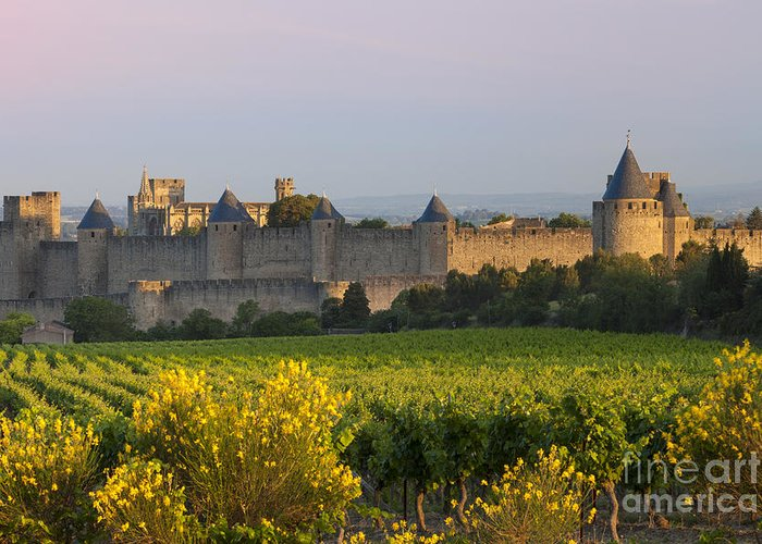 Carcassonne Greeting Card featuring the photograph Dawn In Carcassonne by Brian Jannsen