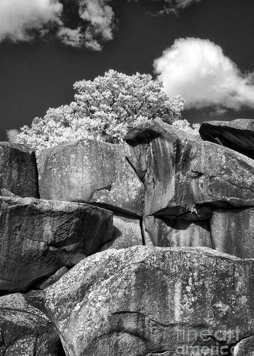 Infrared Greeting Card featuring the photograph Devil's Den - 39 by Paul W Faust - Impressions of Light