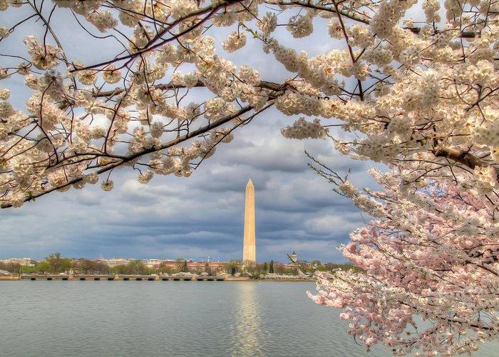 Metro Greeting Card featuring the digital art Digital Liquid - Cherry Blossoms Washington Dc 4 by Metro DC Photography