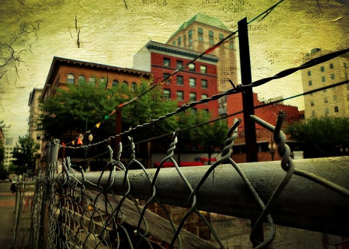 Greeting Card featuring the photograph Down The Fence by Cathie Tyler