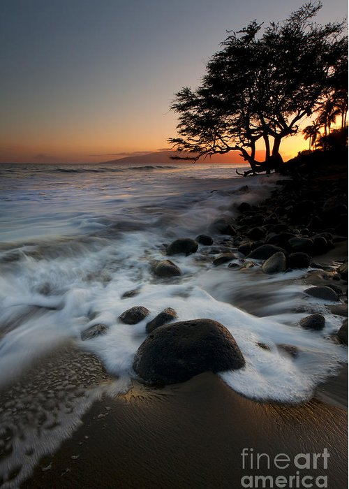 Lahaina Greeting Card featuring the photograph Encompassed by Mike Dawson