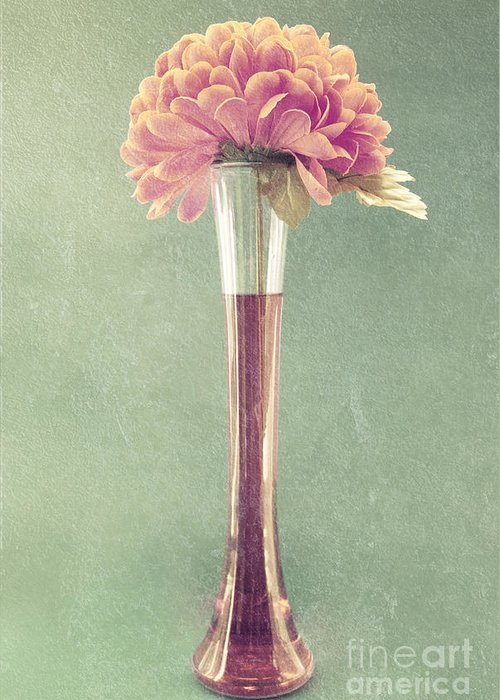 still Life Greeting Card featuring the photograph Estillo Vase - S01t04 by Variance Collections